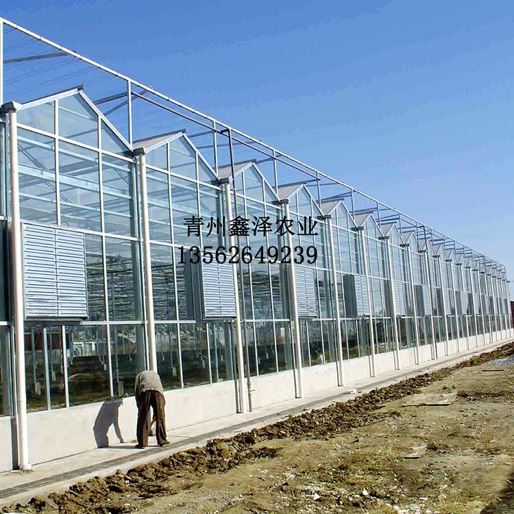 玻璃大棚 玻璃大棚厂家玻璃大棚价格玻璃大棚图纸玻璃大棚多少钱一亩玻璃大棚设计连体玻璃大棚