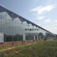 玻璃大棚建筑商玻璃大棚工程