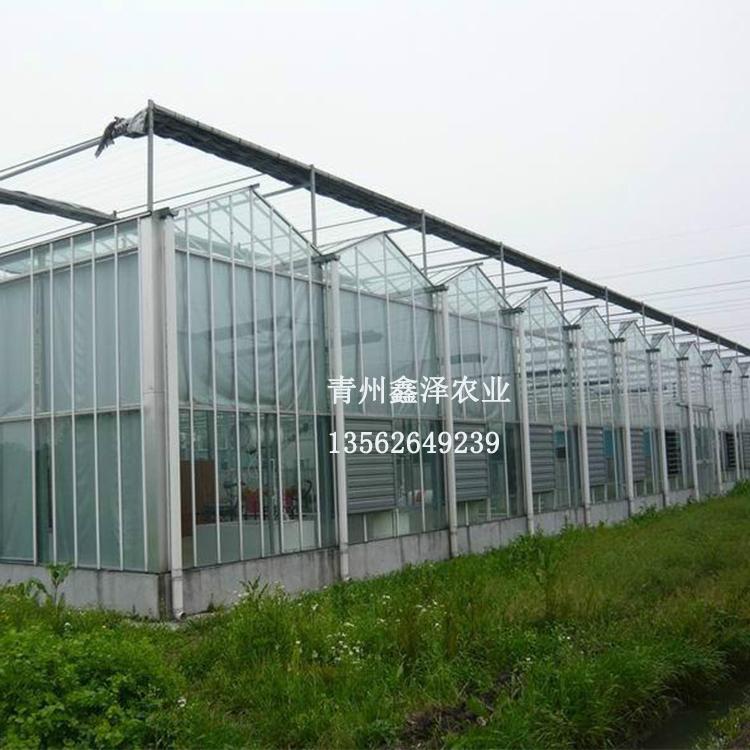 温室大棚图纸 温室大棚设计  玻璃温室 温室工程 玻璃温室多少钱 一亩玻璃大棚价格