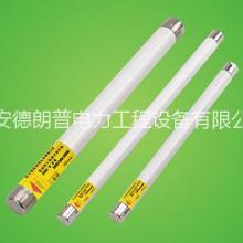 高压熔断器 高压熔芯 变压器保护 XRNP型电压互感器保护