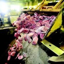 上海区域较好的食品销毁公司,上海有没有好的食品销毁公司批发