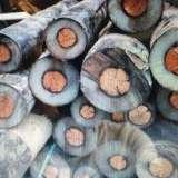 珠海废旧电缆线回收价格 珠海旧电线回收公司 废旧电缆电线收购 高价上门回收电线电缆