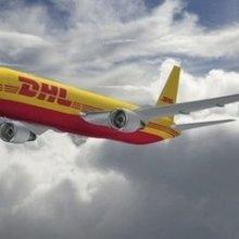 提供国际快递运输服务提供国际快递运输服务到以色列批发