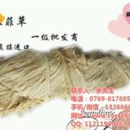 广东拉菲草绳图片