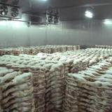 广腾肉类冷库供应商肉类冷库最新价格 肉类冷库批发 肉类冷库造价