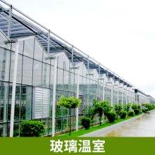 温室大棚图纸 温室大棚设计  玻璃温室 温室工程 质量好 施工快