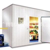 供应果蔬冷库 食品冷库上门安装工程 大型水果冷库