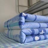 学生专用棉被 学生专用棉被批发 优质学生专用棉被 学生专用棉被厂家直销