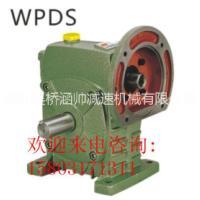 WPDS蜗杆减速机