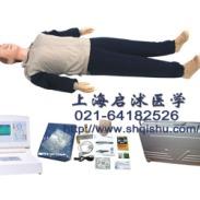 急救训练人体模型图片