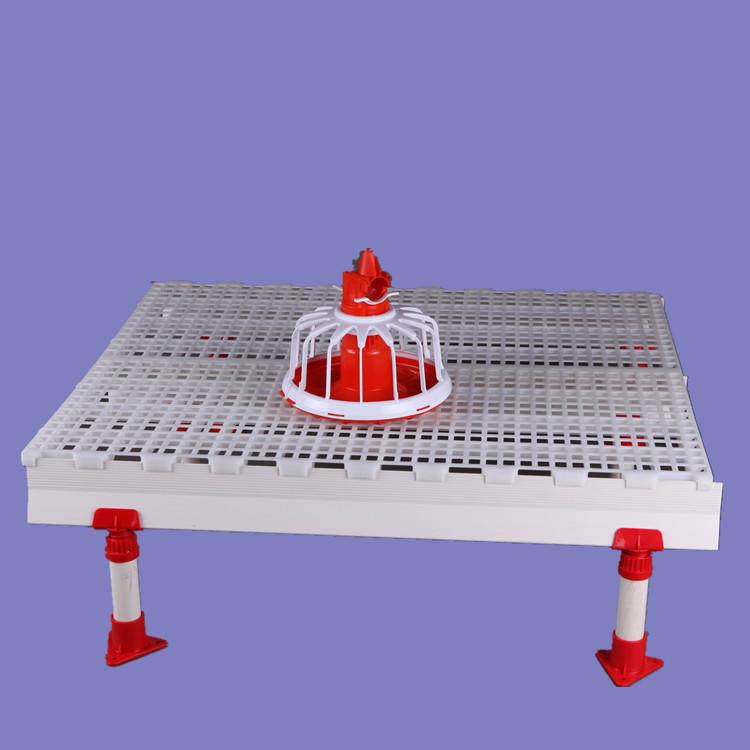 1200*500鸡鸭塑料漏粪地板 育雏用漏粪地板 鸡用漏粪地板