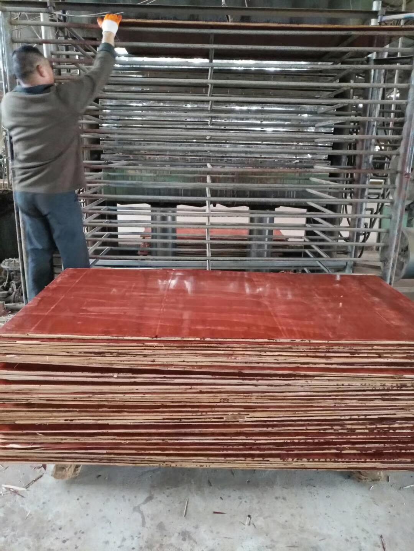 梧州厂家直销工地工程用胶合板防水耐磨建筑模板全国包邮水泥木板建筑用胶合板