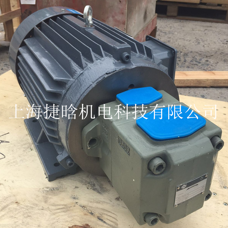 供应注塑机专用YYB-225S-4-37KW内轴油泵电机 液压泵电机