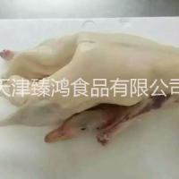 天津白条鹅冷冻批发厂家