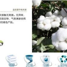 赣州全棉拉架布厂家直销订制图片