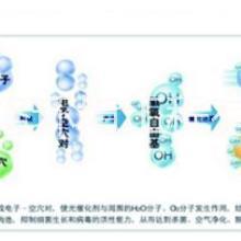 催化燃烧技术专业技术生产制造 催化燃烧技术专业技术生产制造江苏