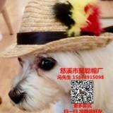 寵物帽定做狗狗帽子加工廠寵物用品廠家聚聰帽子廠