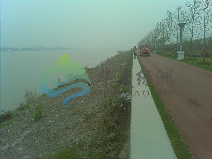 北京喷播绿化技术  地产开挖边坡飘台种植槽技术   联体植生垫 湿地公园 联体植生垫 湿地公园河道护理