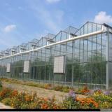 供应用于的农业用具/寿光鸿盛温室大棚建造/智能生态餐厅/温室工程公司/日光温室/蔬菜大棚造价/温室建造哪家强