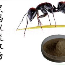 黑蚂蚁提取物价格 宁夏厂家供应蛤蚧提取物 守宫提取物 蜗牛提取物 蜗牛蛋白肽价格 田螺粉产地 蟾蜍提取物 蟾蜍衣粉