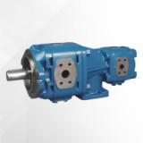 SUNNY液压系统伺服油泵HG21-100-50-01R-VPC