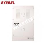 化学品储存柜ACP810048T Sysbel化学品柜  强腐蚀性化学品储存柜