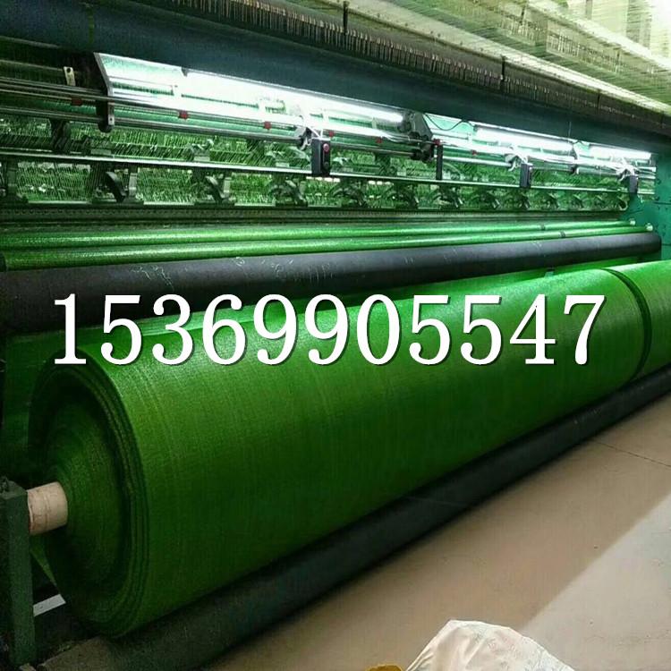 供应2.5针绿色盖土网 防尘网