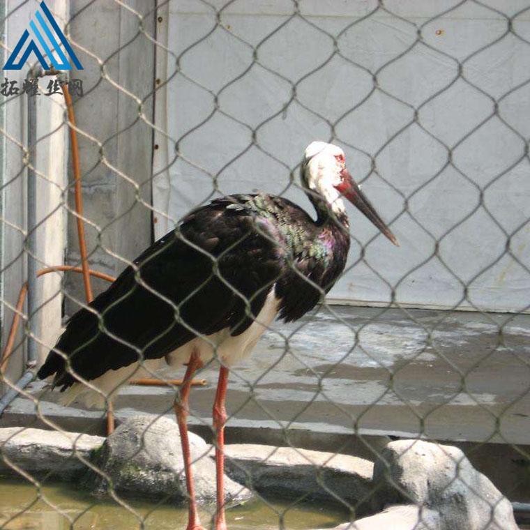 卡扣钢丝绳网 马戏团专用不锈钢绳网 鸟网不锈钢绳网