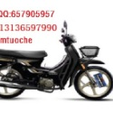 宗申力之星LZX110摩托车电动图片