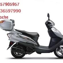 供應宗申威尼斯假日ZS125T-2AII 踏板摩托車圖片