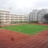 福建人造草跑道  人造草足球场材料展奥体育