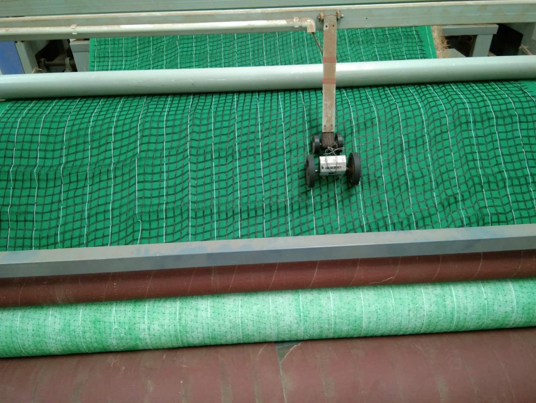 山东环保草毯供-山东环保草毯生产厂家-优质环保草毯供应商-山东环保草毯品牌-山东优质环保草毯厂家报价 山东环保草毯供应商