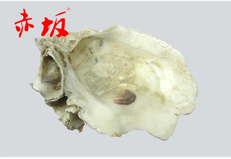 过滤牡蛎鱼池材料稳定水质蚝壳 鱼池过滤20KG