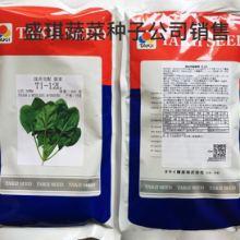 耐寒菠菜种子 进口菠菜种子 种子公司销售 红根菠菜种子 菠菜基地