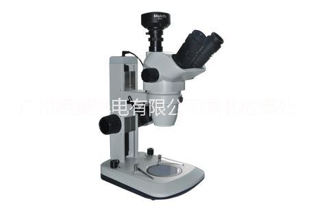 体视显微镜MZ62