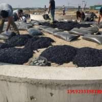 安徽蚌埠沥青砂展现罐底材料由热到冷的华丽蜕变