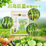 辣椒种子尖椒 辣椒种子尖椒耐寒NH3-9