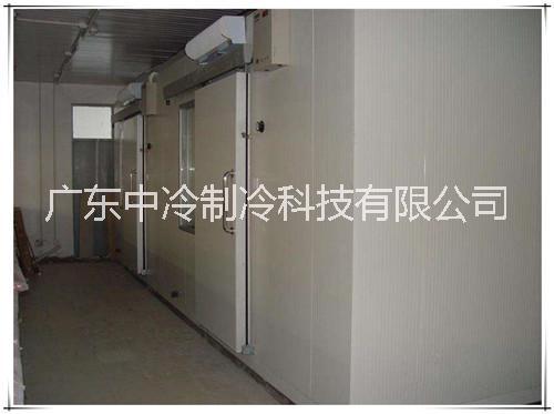 东莞冷库 大型冷库工程 20年经验 广东中冷制冷