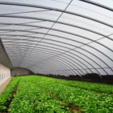 供应湖北地区日光温室蔬菜大棚,山东豪达瑞科厂家直销