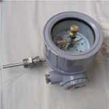 WSSX系列防爆电接点双金属温度计