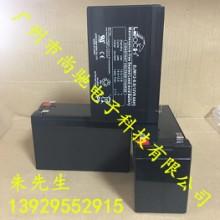 消防照明音响电池12V9A DJW12-9.0理士电池 LEOCH蓄电池9a批发
