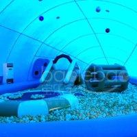 郑州宝乐宝  鲸鱼岛海洋球乐园