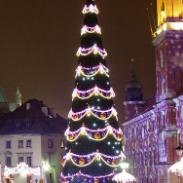 框架圣诞树图片