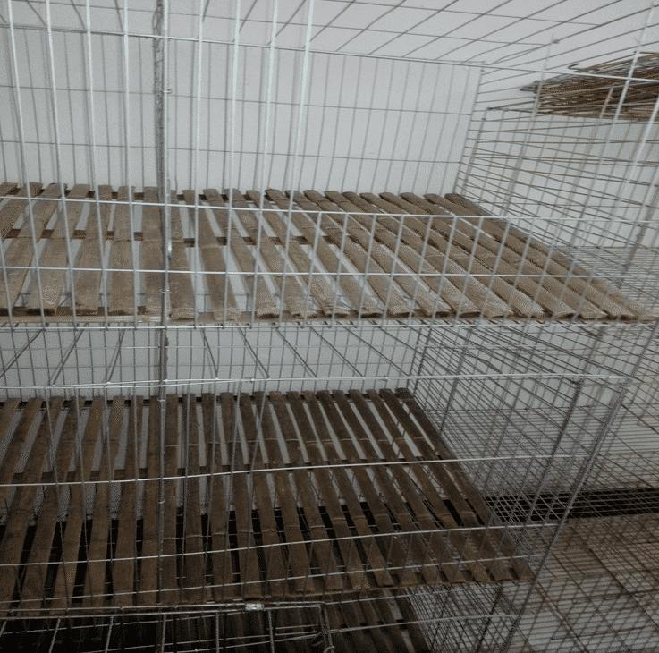 铁丝兔笼竹底板厂家直供