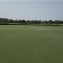 莱宝体育抗紫外线高尔夫推杆地毯