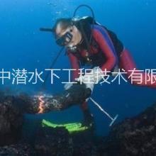 连云港中潜码头桩基检测 维修 河道 管道清淤疏浚围堰加固工程批发