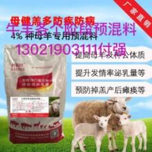 肉羊饲料添加剂,母羊种羊专用饲料批发