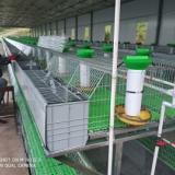 厂家直销兔子养殖设备