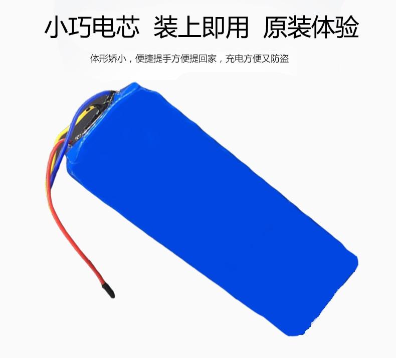 红蚂蚁锂电池48v10安时小电动车48V10安时锂电池电芯女士电动自行车锂电池三元锂电池电芯