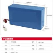 红蚂蚁锂电池 48v12安时图片